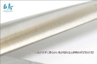 swan-a10-4[1].jpg